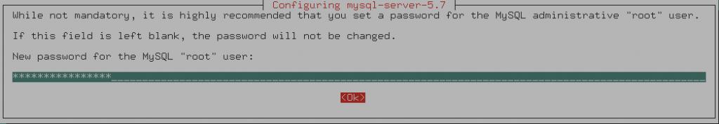 Set root MySQL password